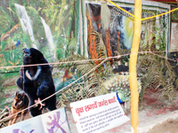 Ganga Exhibition  - Save forest save life