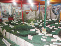 Ganga Exhibition  - Uninterrupted flow of River Ganga and its Tributaries make river free from pollu